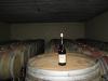 wine-tour-145