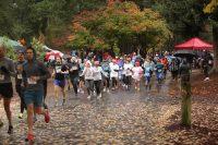 Regatta Run 2017